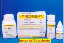 inorganic phosphorus reagent